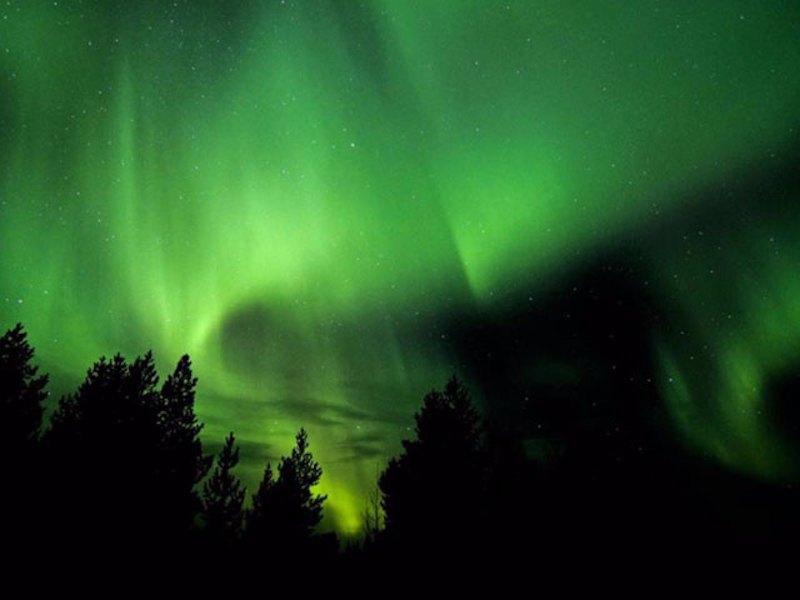 Picture of Northern Lights Safari