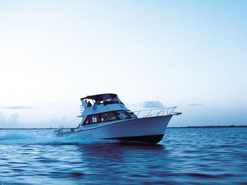 Picture of Private Boat Charters
