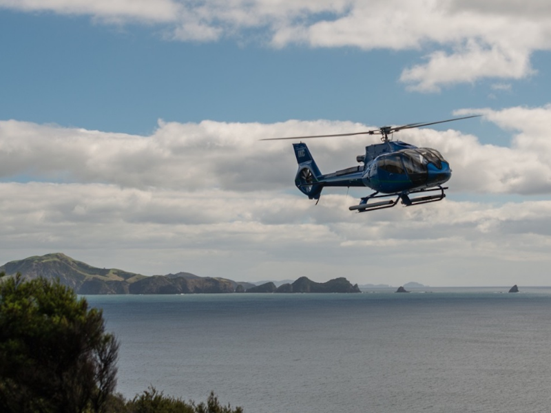 Picture of Helicopter Bay of Islands Discovery Tour