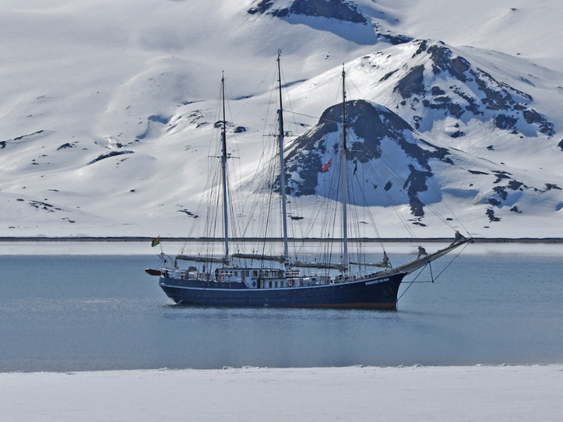 8 Days North Spitsbergen, Arctic Spring , Polar bear tour